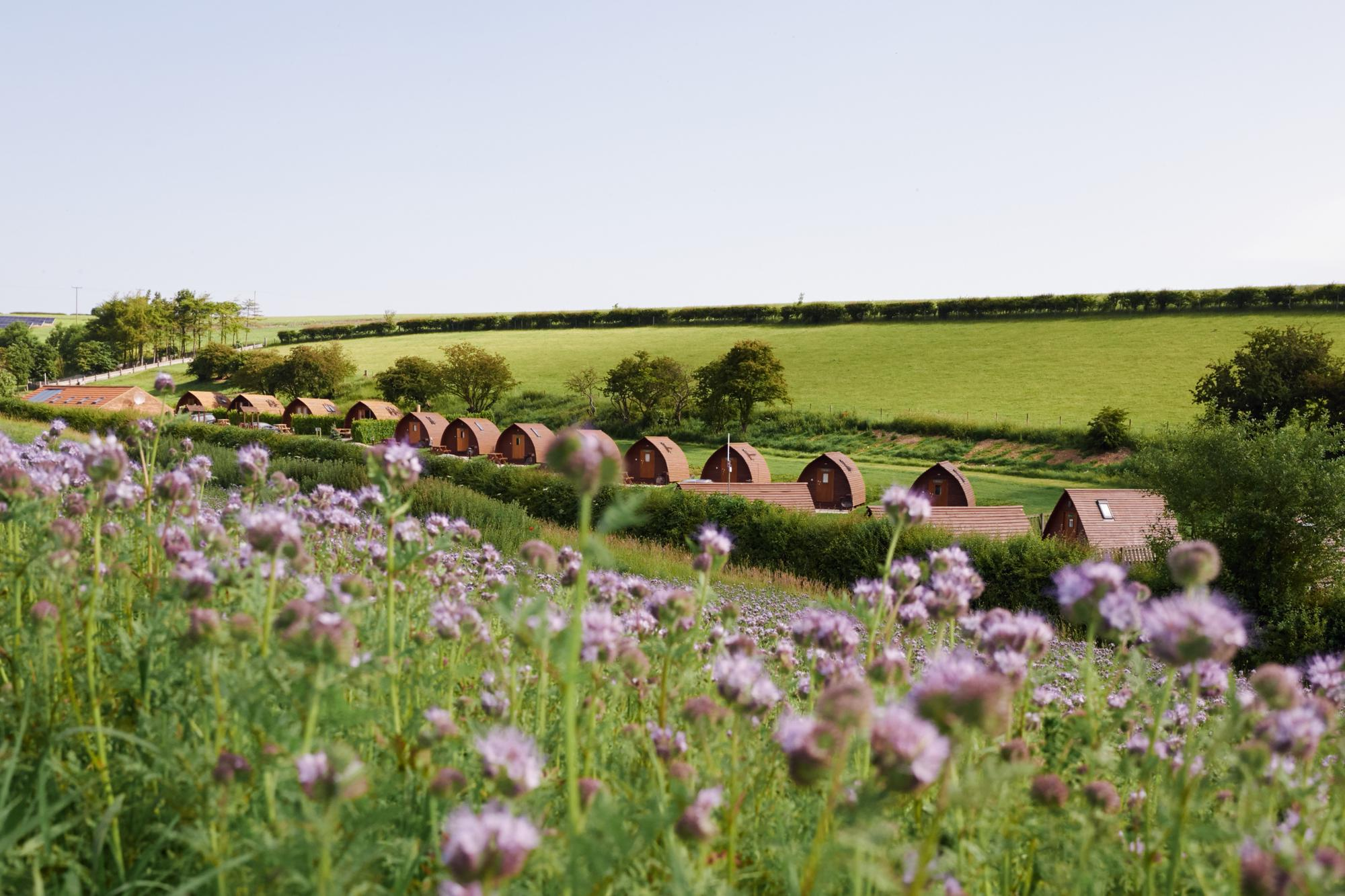 Campsites in North Yorkshire – Glampingly