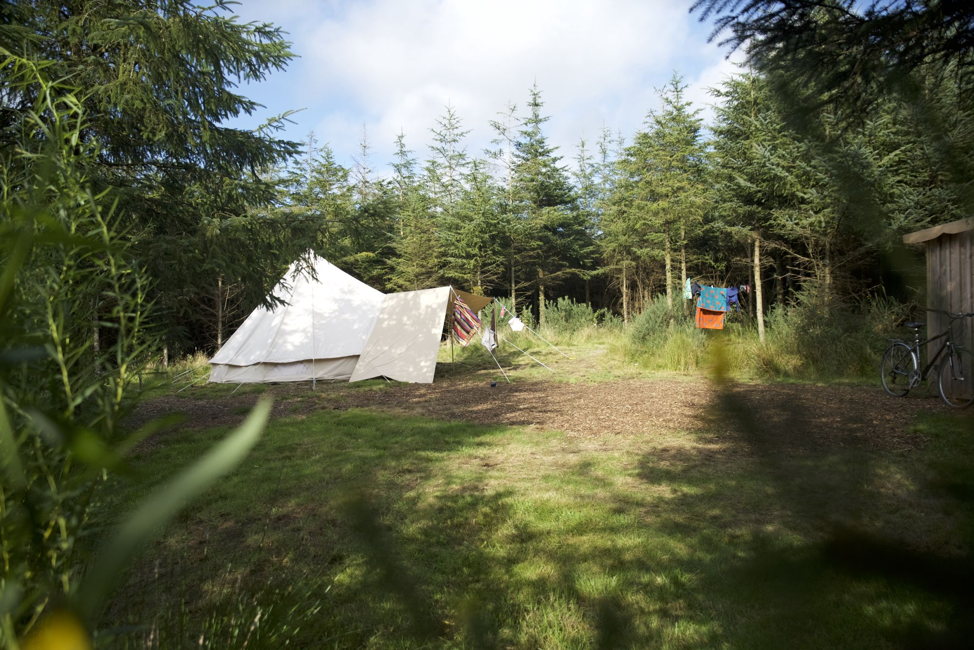1- One of our woodland pitches - that's right all you see is just for one family.