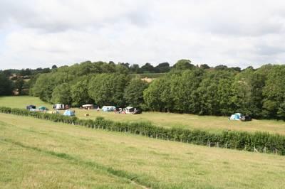Bedgebury Camping Pattenden Farm, Goudhurst, Cranbrook, Kent TN17 2QX