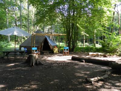 Eco Camp UK at Wild Boar Wood