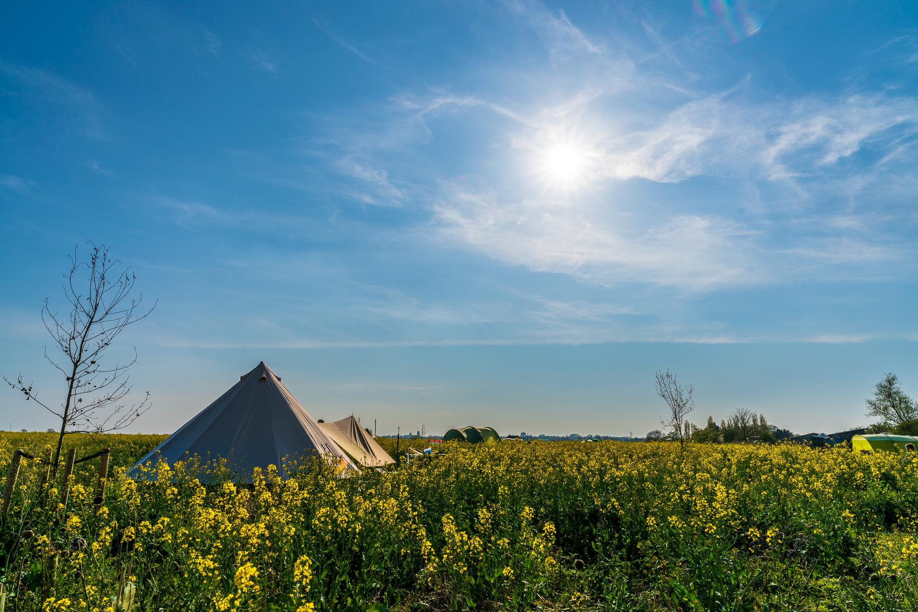 Glamping in UK holidays at I Love This Campsite
