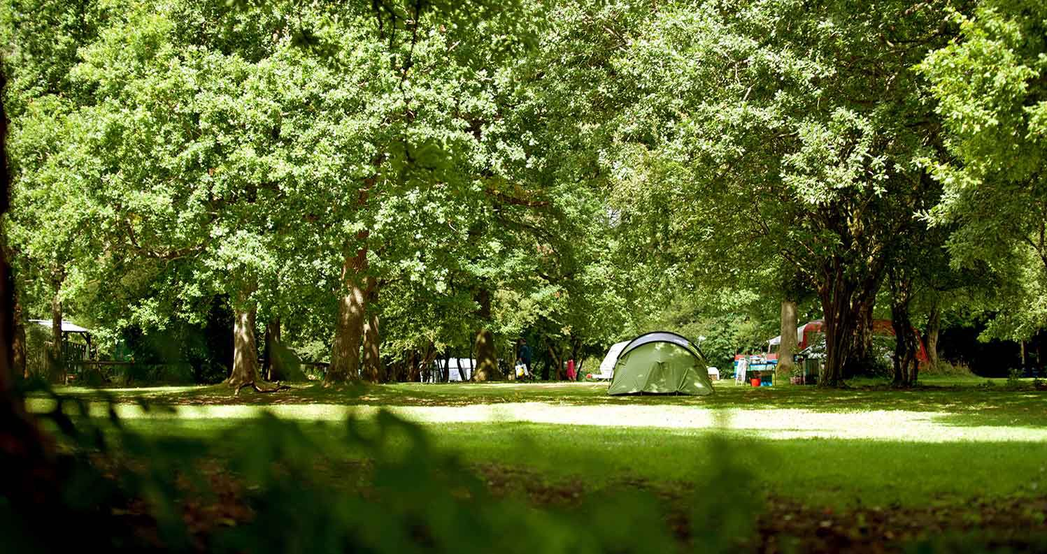 Campsites in the Wessex Downs Area of Outstanding Natural Beauty