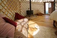 Apple Tree Yurt