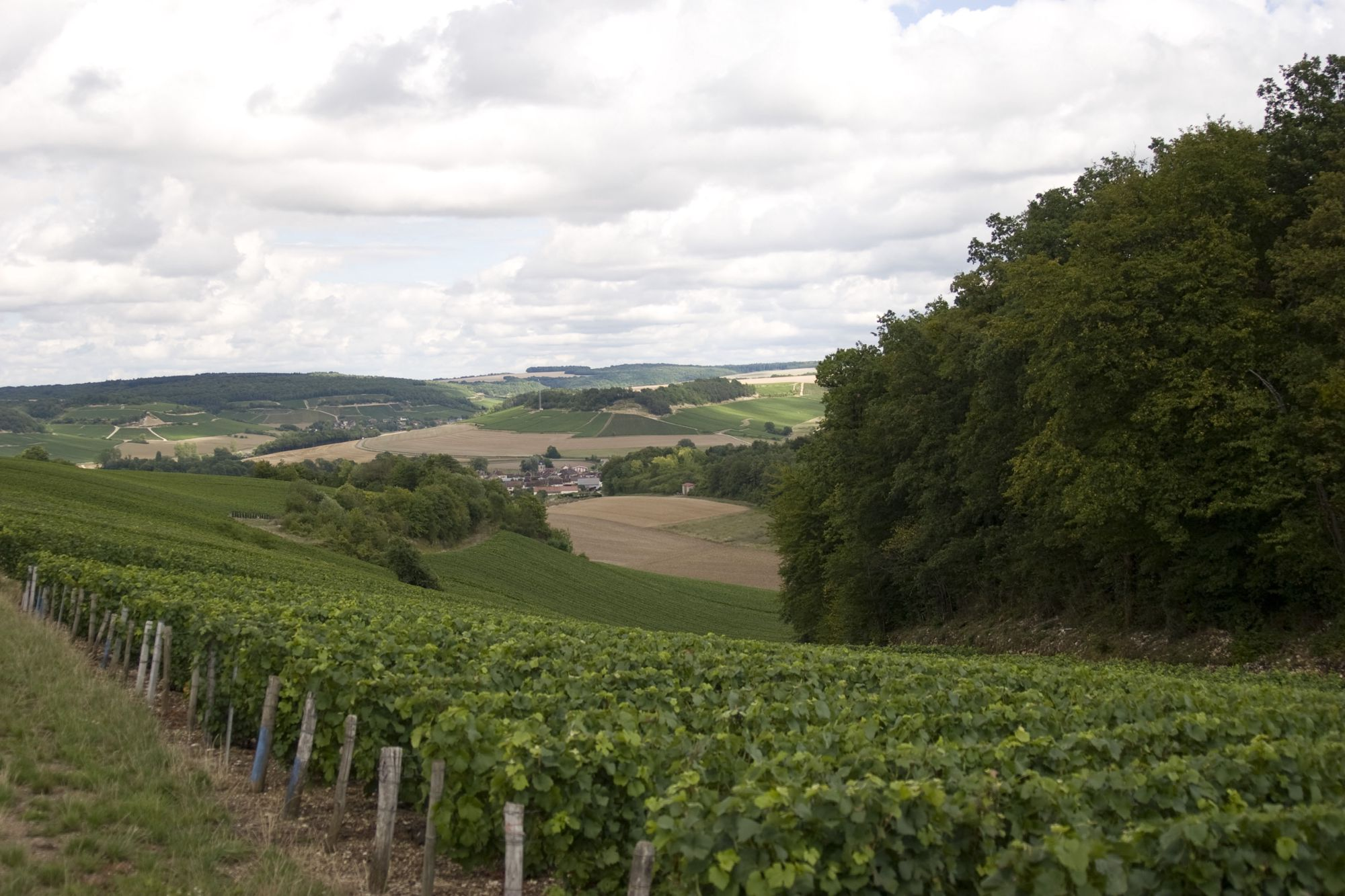 As any red-nosed soul will expound between hiccups, France has a somewhat well-deserved reputation for its wine.