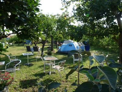 A small, nature friendly campsite on the outskirts of La Rochelle, West France.