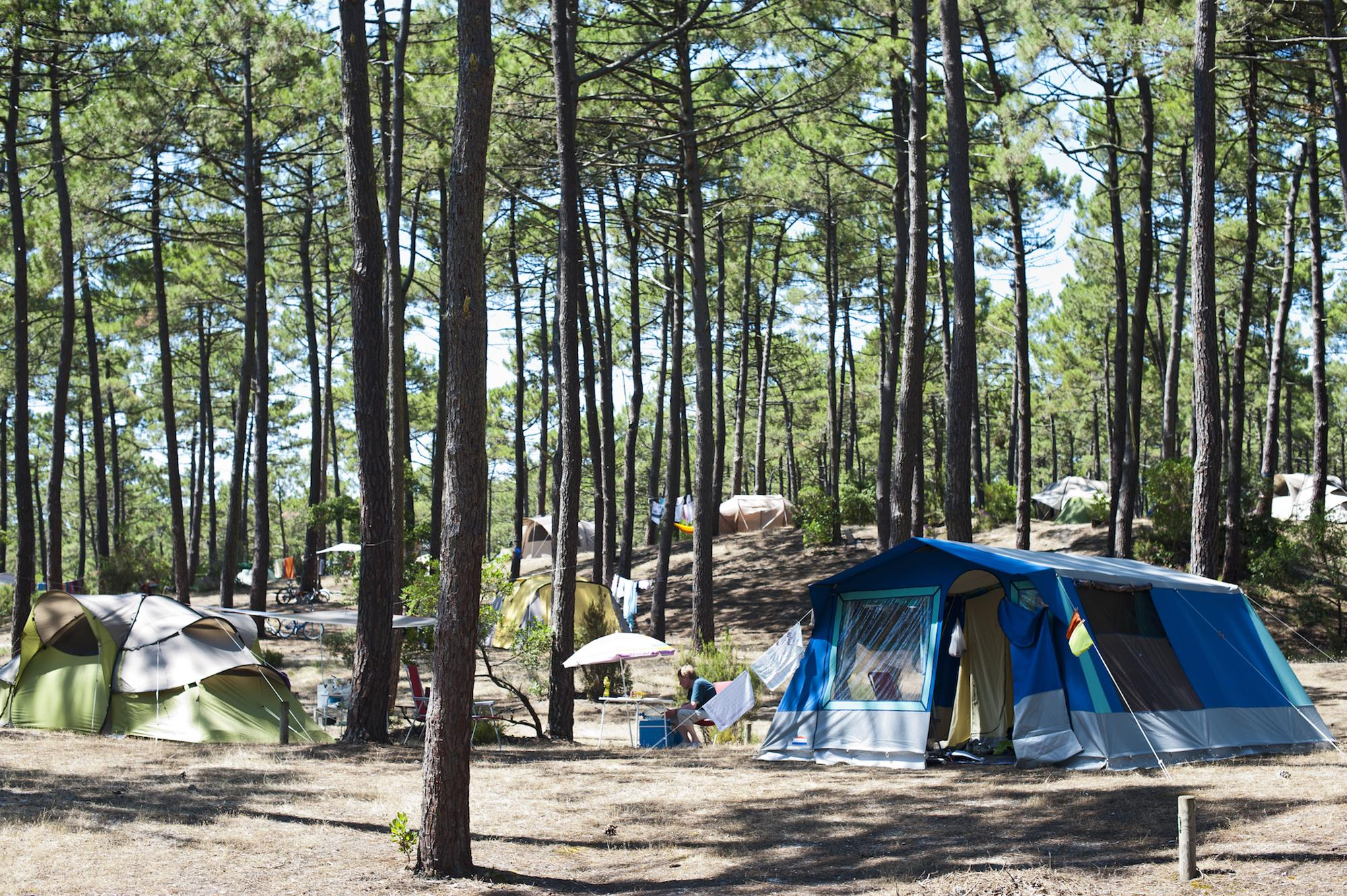 Campsites in Gironde holidays at Glampingly