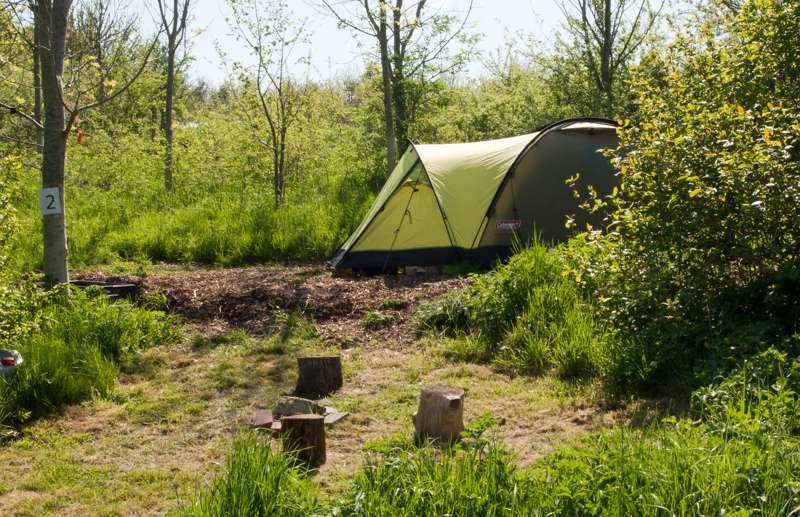 6m x 2m - 3m  Small woodland pitch No.2