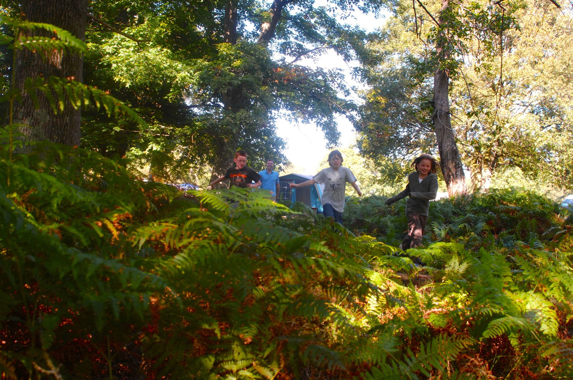 Nearly Wild Campsites – Wild Camping Campsites in the UK