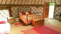 Stargazer - Extra Large Luxury Yurt