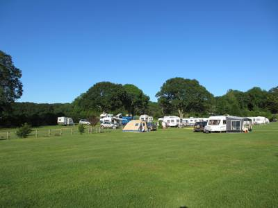 Relaxed camping in the New Forest with a great pub right on the doorstep.