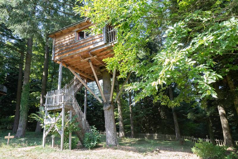 """Hérisson"" Hedgehog Tree House"
