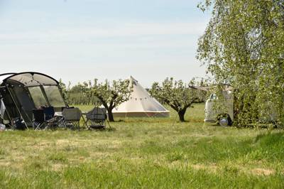 Fallow Fields Camping Fallow Fields Camping, Selson Farm, Drainless Road, Eastry CT13 0EA