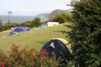 Large tent pitch