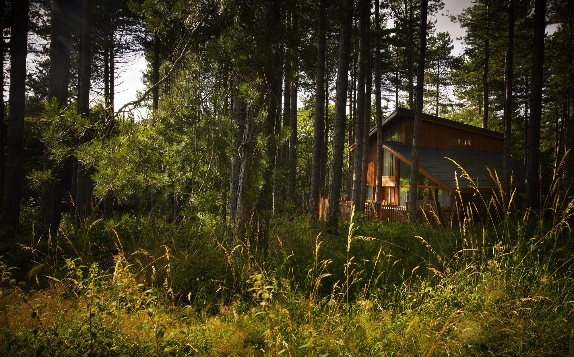 Woodland Cabins & Lodges - best UK cabins in the woods - Cool Places to Stay in the UK