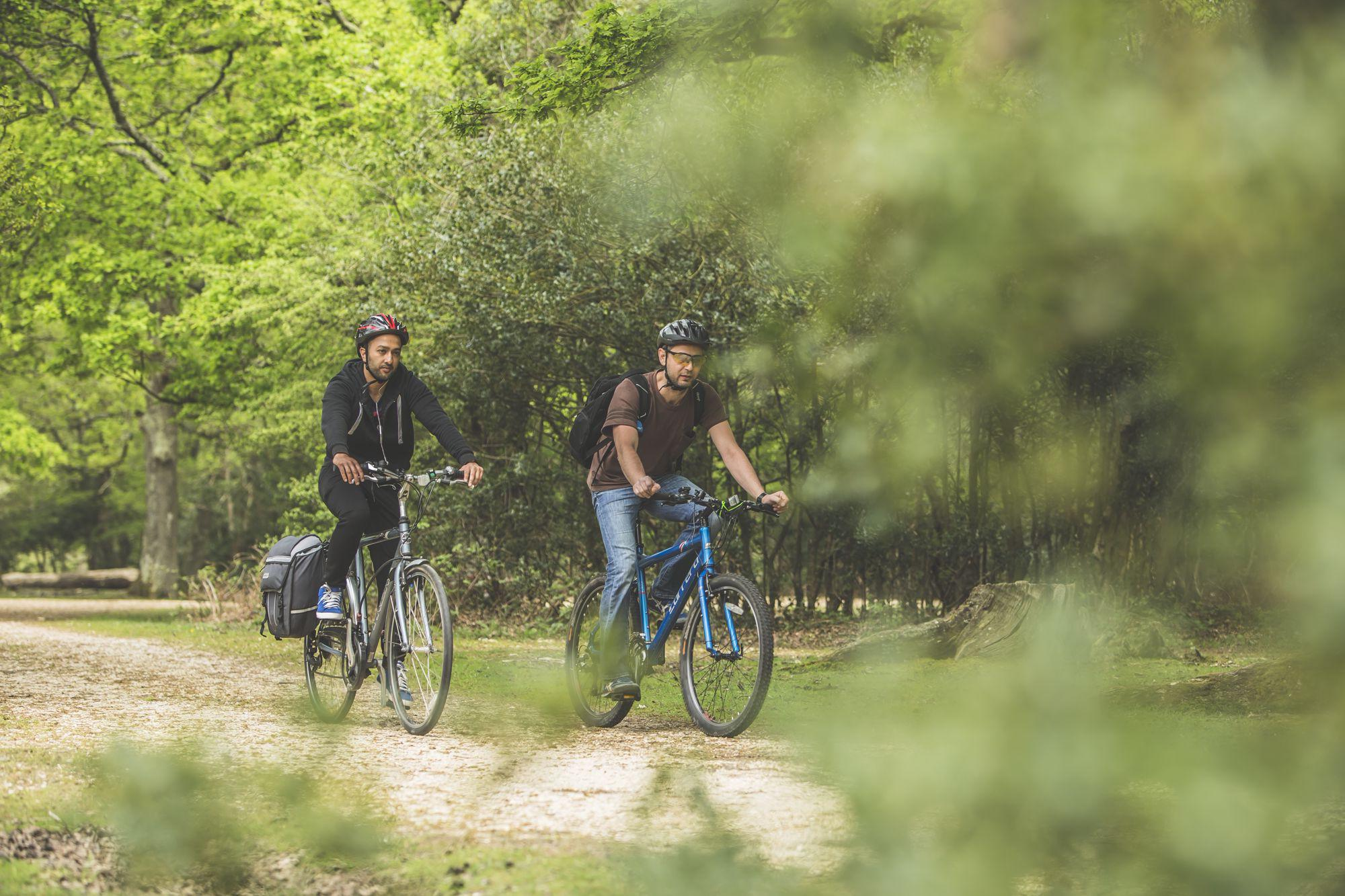 New Forest car-free cycle paths