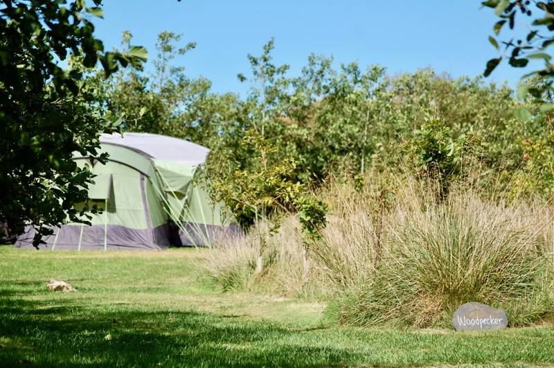 Ty Parke Camping & Yurt Holidays