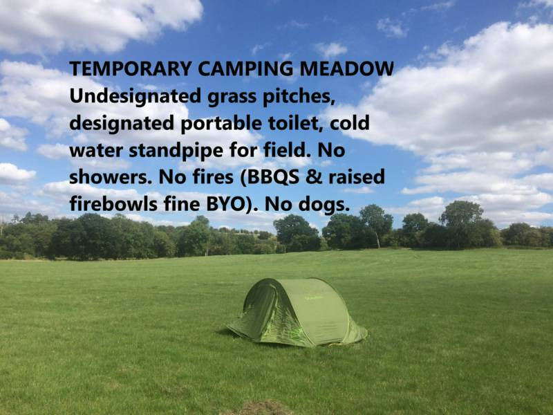 Pop-up Camping Meadow Pitch (Toilet No. 20)