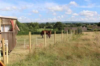 Honeybuns Honeybuns Naish Farm, Stony Lane, Holwell, Sherborne, Dorset DT9 5LJ