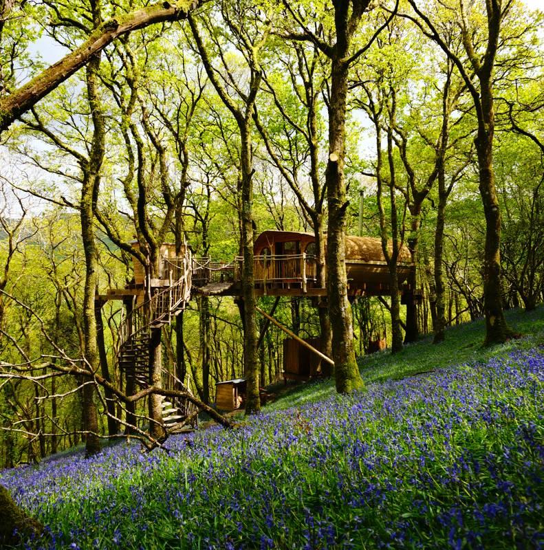 Living Room Treehouse Bryn Meurig Farm, Cemmaes, Powys SY20 9PZ