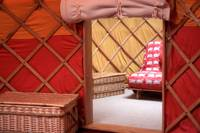 Ash Field Yurt with Yurt Pod