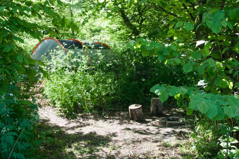 2.5m x 4m Small woodland pitch No. 4