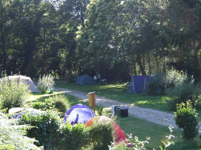 The warm welcome comes with cool, shady pitches in the forest, even in high season.