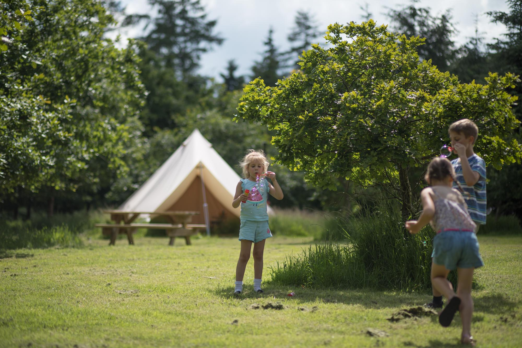 Glamping in Ludlow holidays at Cool Camping