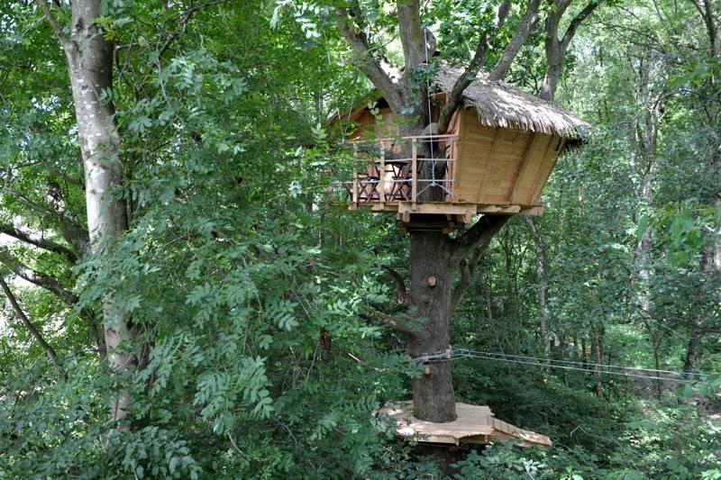 """Terriers"" Tree House"