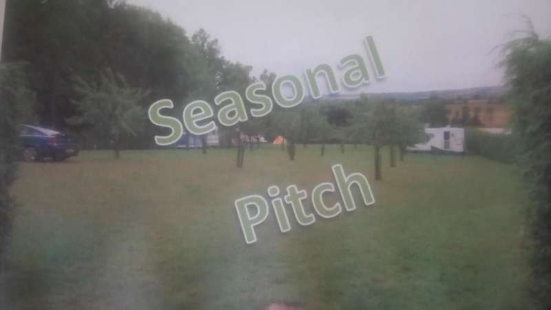 Seasonal Pitch - Orchard Field