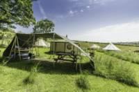 Yurt - Bertie