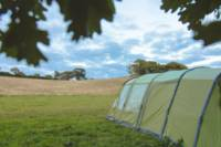 Wild Camping Pitch