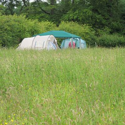 Camping Pitch Grown Ups