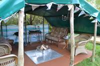 Brown Trout Bell Tent