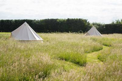 Campsites in Suffolk – The best independent campsites in Suffolk – Cool Camping