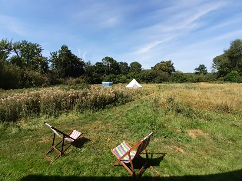 Spacious bell tent in a private Essex nature reserve