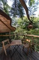 """""""Hibou"""" Owl Tree House"""