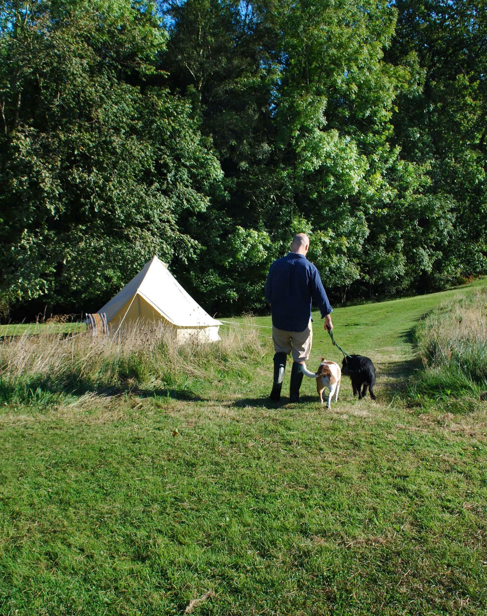 Glamping with your dog: top tips