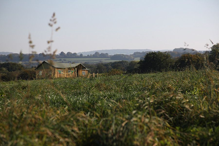 Luxury safari tent glamping set within the unspoilt countryside of western Somerset.