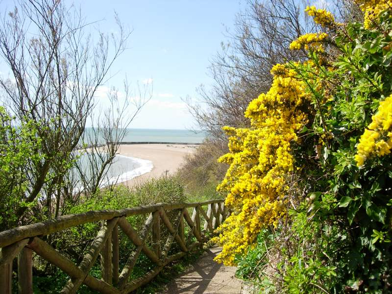 Lower Leas Coastal Park