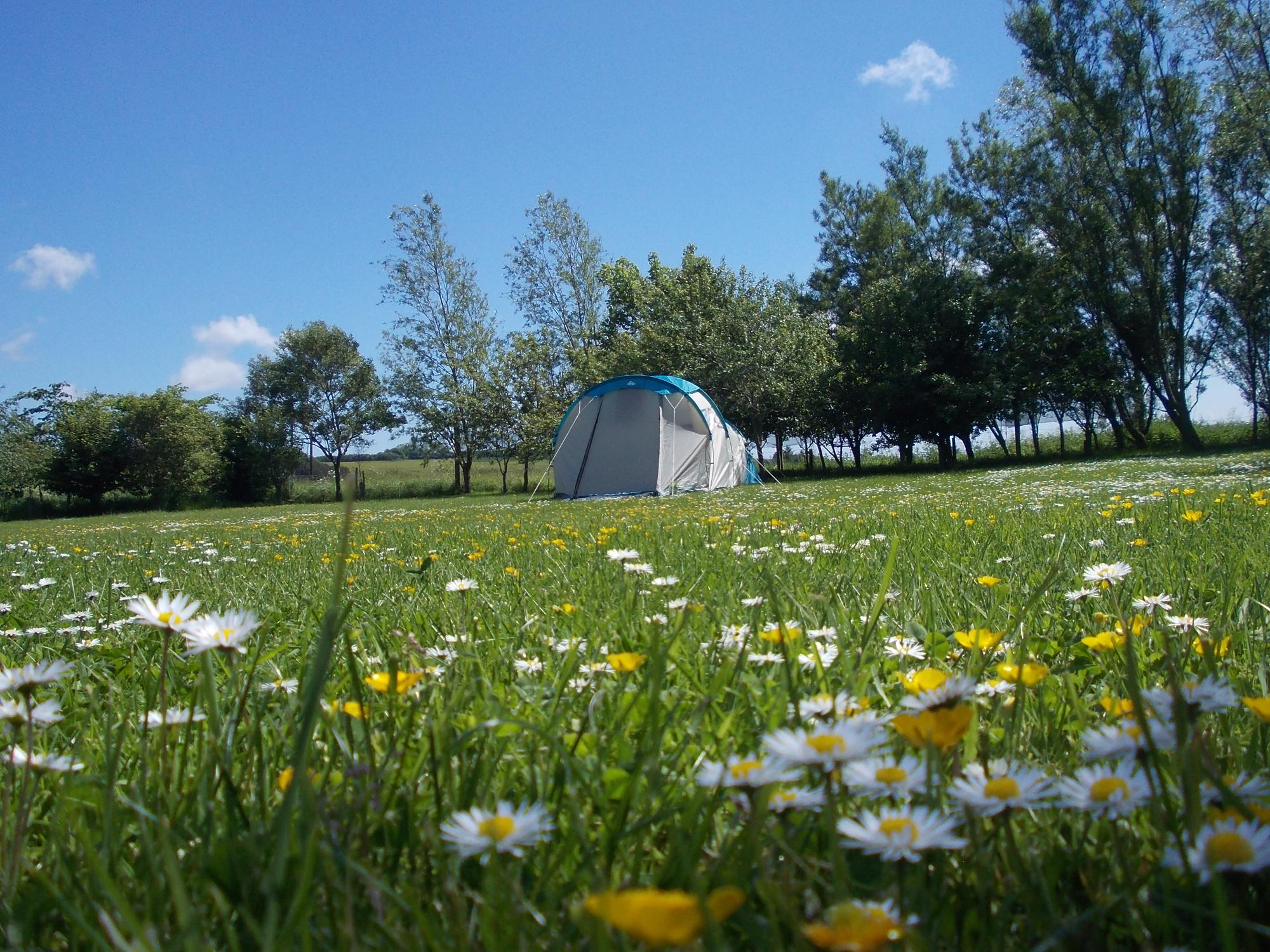 Ythan Valley Campsite