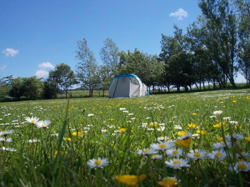 Ythan Valley Campsite  Smithfield, Ythanbank, Nr Ellon, Aberdeenshire AB41 7TH
