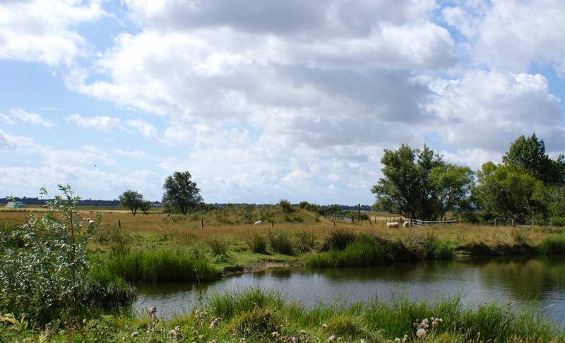 Epping Camping | Campsites near Epping and Epping Forest