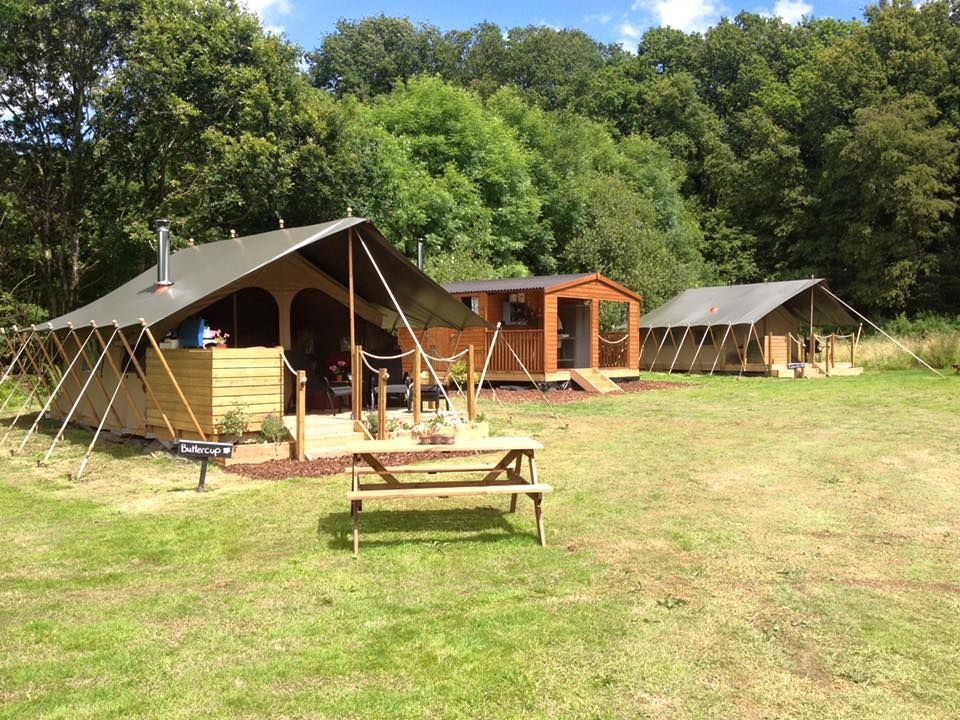 Safari tent glamping in West Devon situated in the grounds of a family-run gardeners' nursery and easily accessible from the M5.