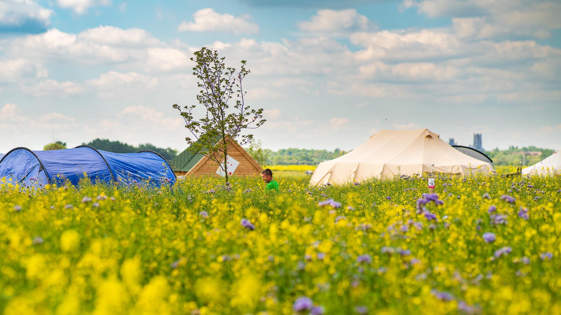 Campsites in Cambridgeshire – I Love This Campsite