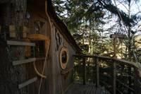 """Renard"" Fox Tree House"