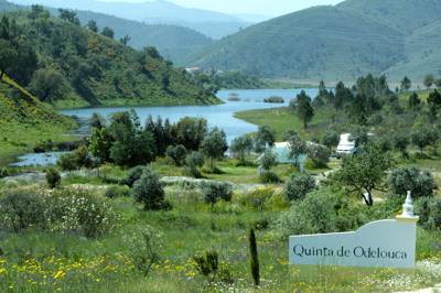 Quinta de Odelouca Vale Grande, Monte das Pitas, CxP 644-S 8375-215 São Marcos da Serra, Portugal