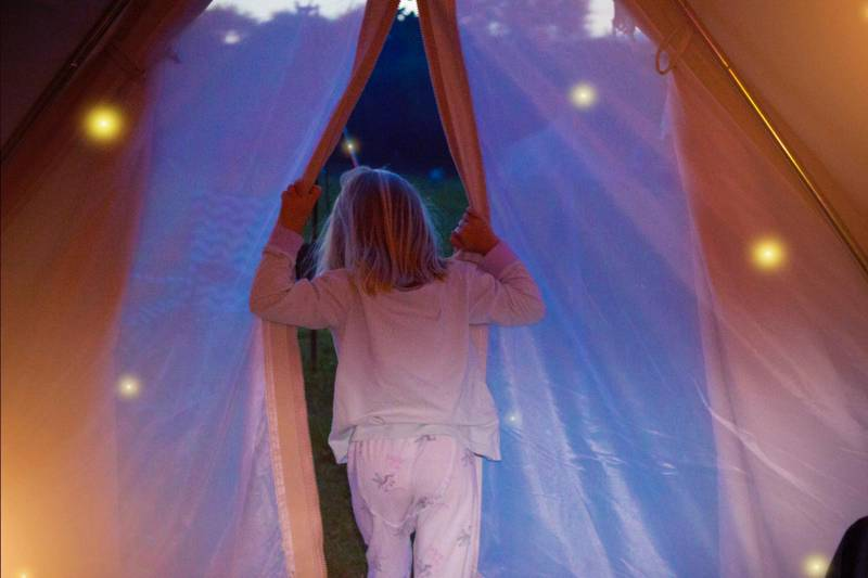 Luxury Bell Tent - Forget-Me-Not