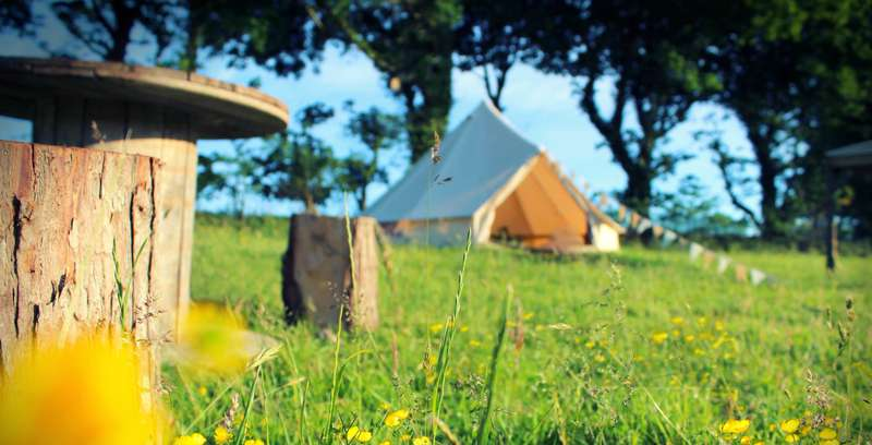 Bell Tent Glamping in Pembrokeshire