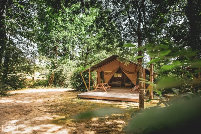 Safari Tent Saadani