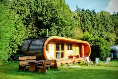Curvy Cabin